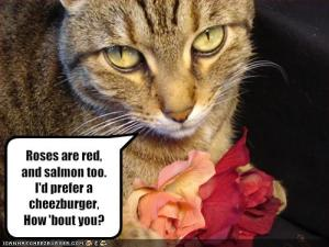https://dragonlaffs.files.wordpress.com/2013/02/funny-valentines-pictures.jpg?w=300