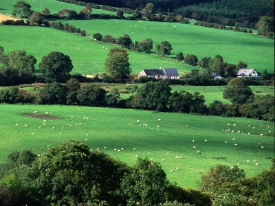 Fields_and_Farmhouses_of_County_Cork_Ireland
