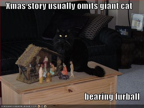 funny-pictures-furball-christmas