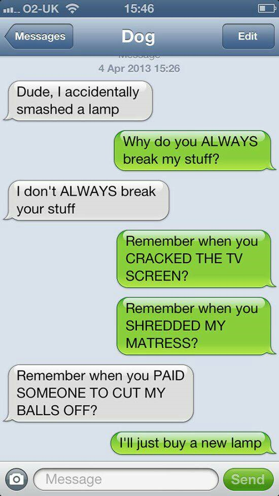 dogs_are_getting_better_at_texting_every_day_23_photos19_1400039628