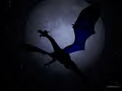 Night Dragon1