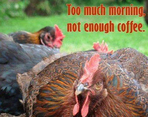 Too much morning not coffee
