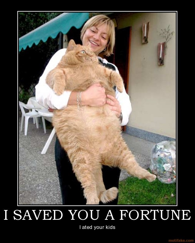 I saved you a fortune