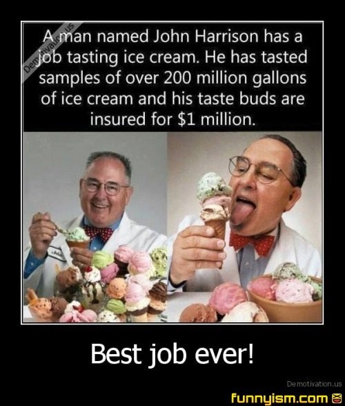 best job ever