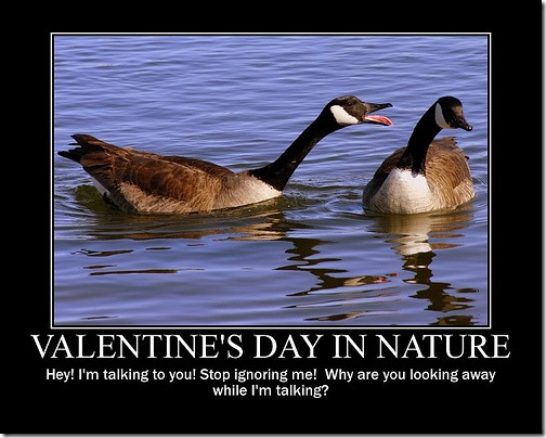 Valentines-Day-in-Nature-Motivational-Poster