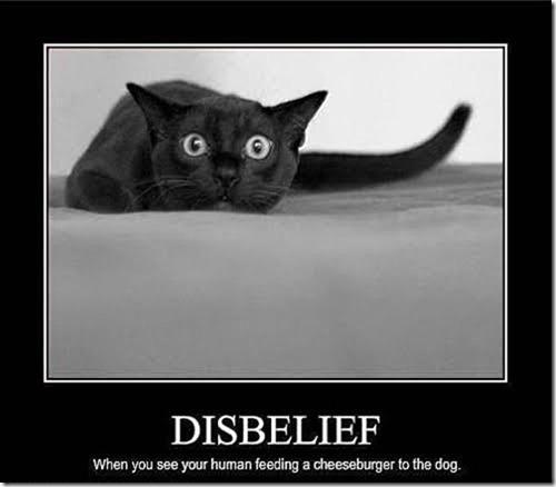 disbelief