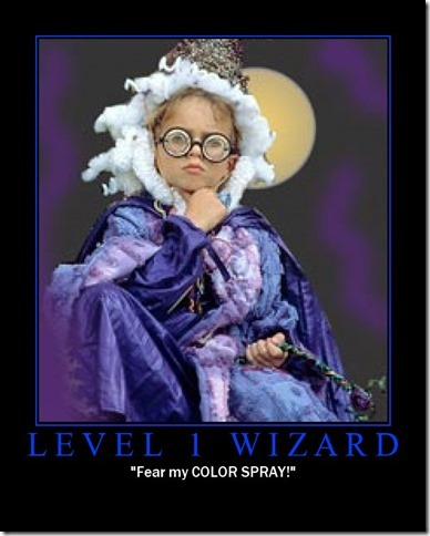 Level 1 Wizard