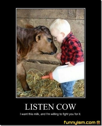 listen cow