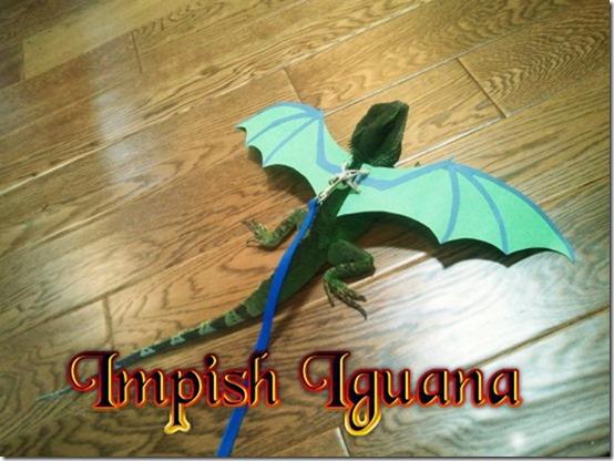 Impish Iguana