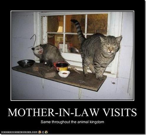 Mother in law visits
