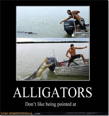Motivational Alligators