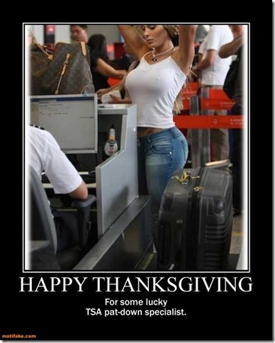 happy-thanksgiving-pat-down-search-airport-breast-demotivational-posters-1385484172