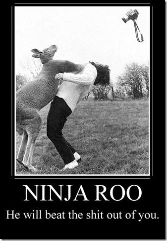 Ninja Roo