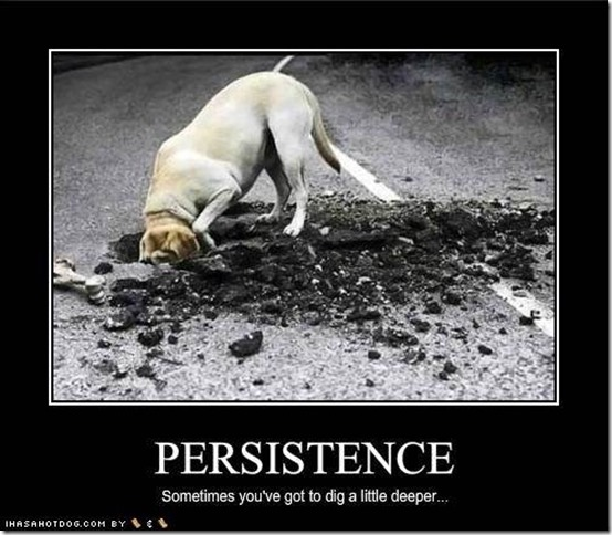 Persistence4