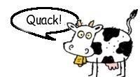 Cow quack