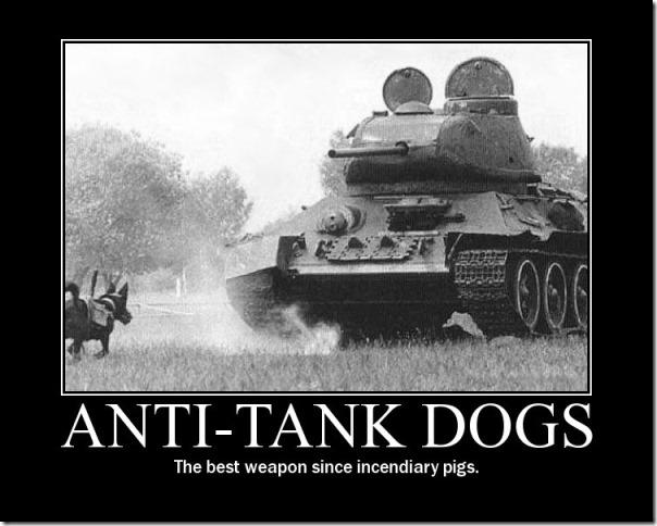 Anti tank dogs