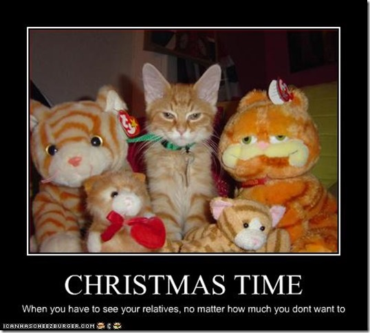 funny-pictures-cat-spends-holidays-with-relatives