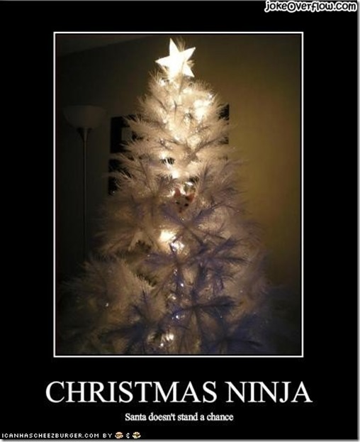 funny_pictures_cat_is_a_christmas_ninja-s450x553-116305-1020