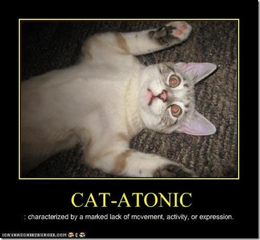 cat-onic