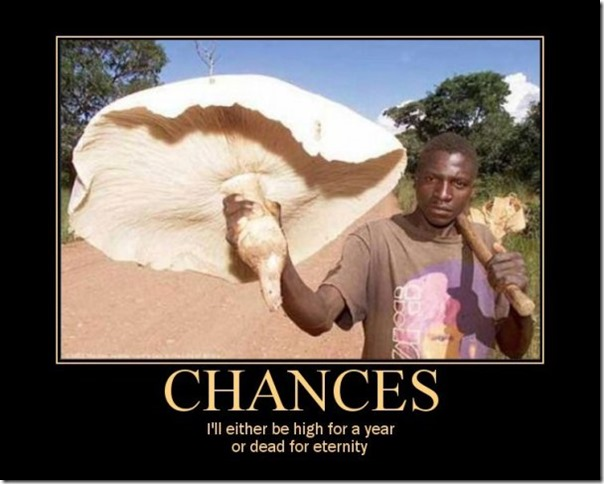 chances2