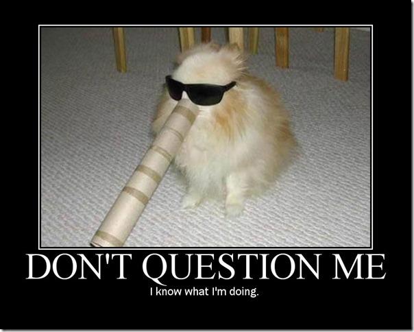 don't question me
