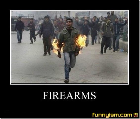 Firearms (2)