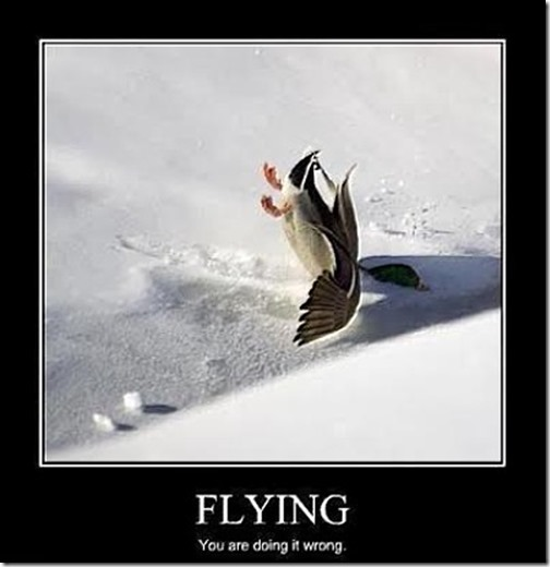 Flying3 (2)