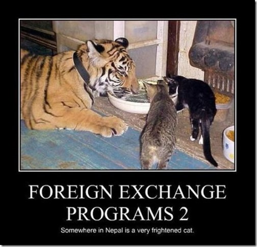 Foreign Exchange Programs