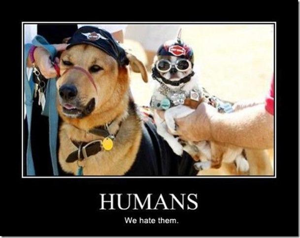 Humans2