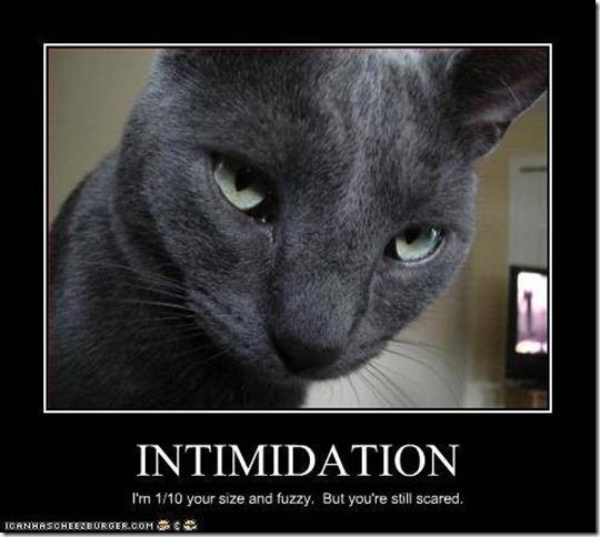 Intimdidation