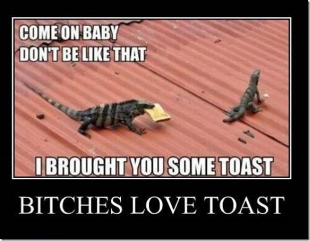 Bitches Love Toast