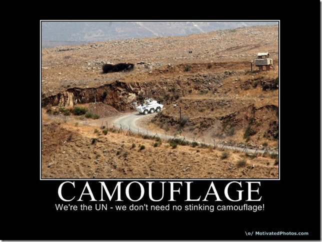 camouflage3