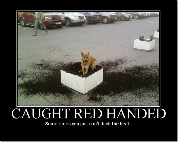 Caught Redhanded