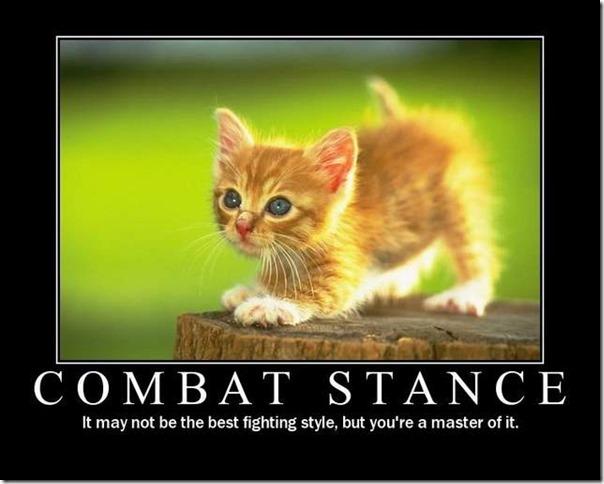 Combat Stance