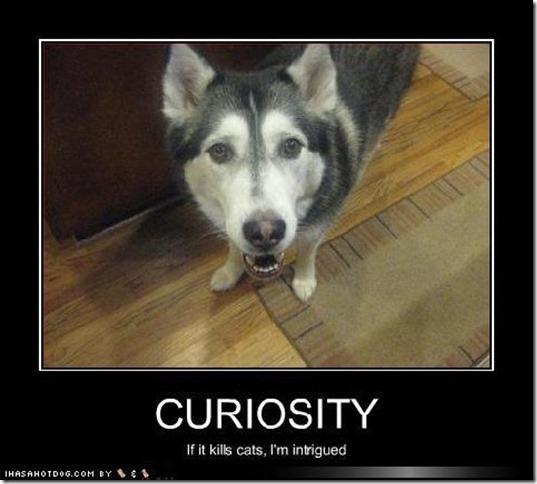 curiosity3