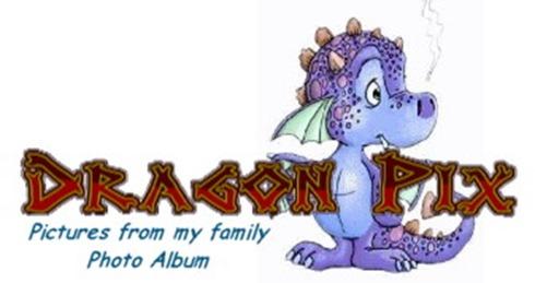 Dragon pic 2