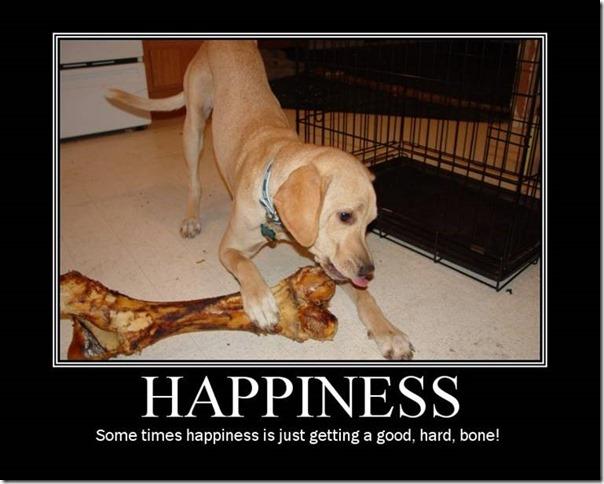 Happiness 15