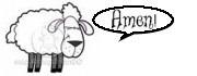 Amen Sheep